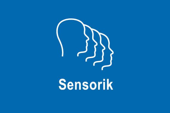 KIN-Special-Sensorik